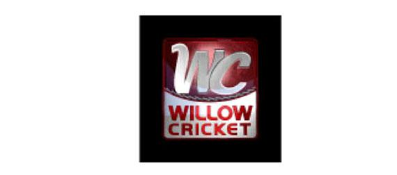 Willow Cricket